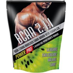 Power Pro BCAA, 500 грамм